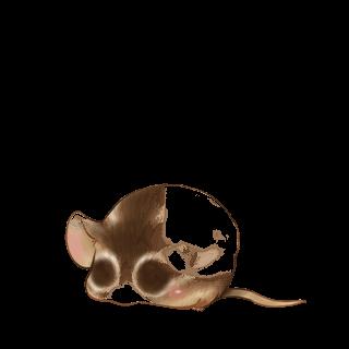 Adopta un Ratón Señorita