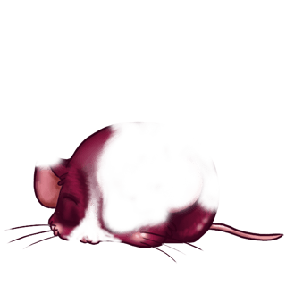 Adopta un Ratón Beige
