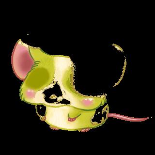 Adopta un Ratón Mandou