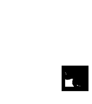 Poiledecarotte