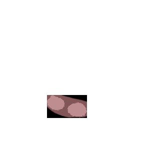 Adopta un Ratón Cuarzo rosa